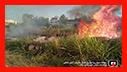 شهروندان هوشیار باشند: بی توجهی در به آتش زدن علفزارها ی رشت در کمین خانه هاست/ آتش نشانی رشت